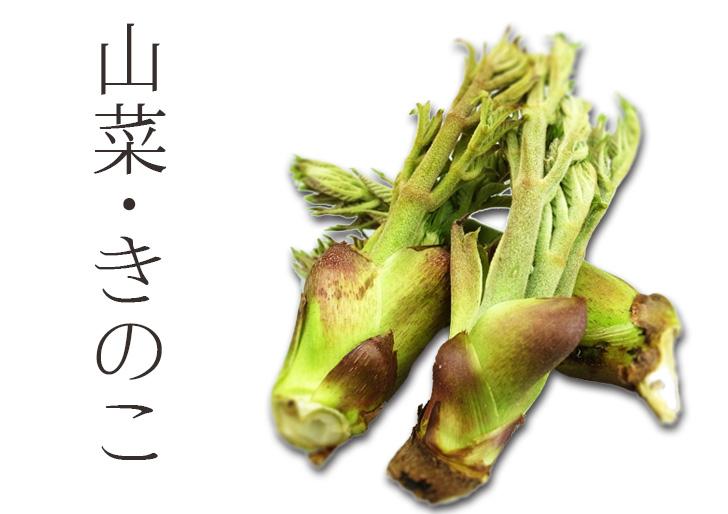 山菜・きのこヘッダー